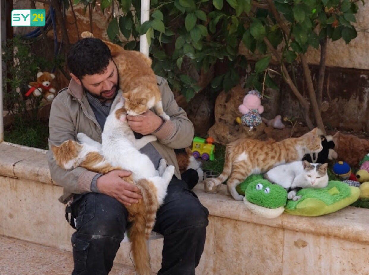 شاب سوري ينشئ محمية للقطط في حلب
