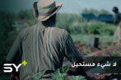 يعمل بنشاط وكأنه لم يتعرض للبتر.. محمود قدور مزارع لم يستسلم لإصابته