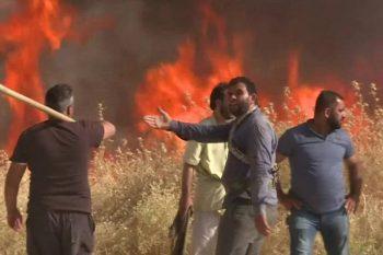 مجدداً.. الحرائق تلتهم المحاصيل الزراعية شرقي سوريا!